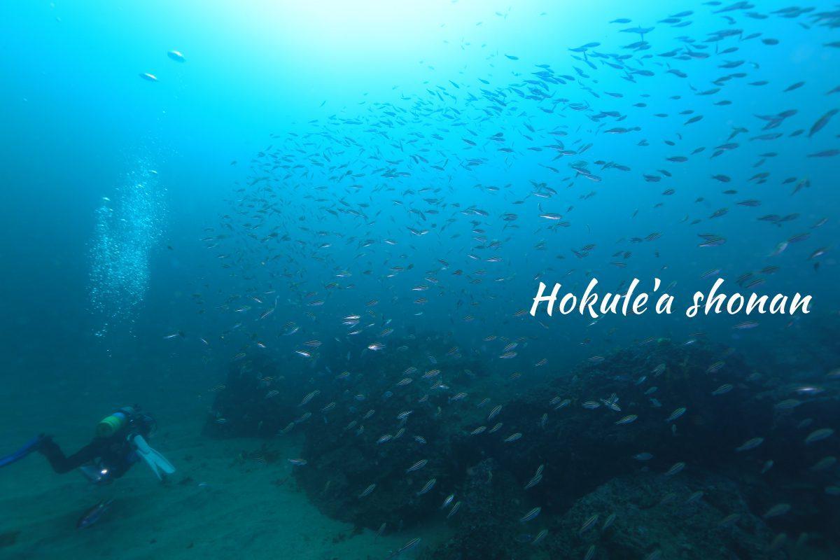 三浦半島の海に感動!