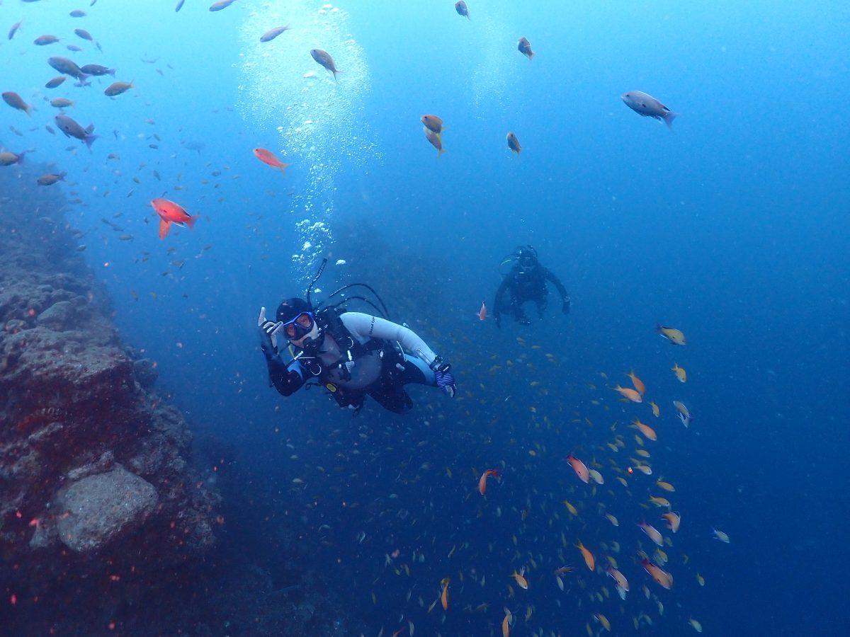 沖の浮島根