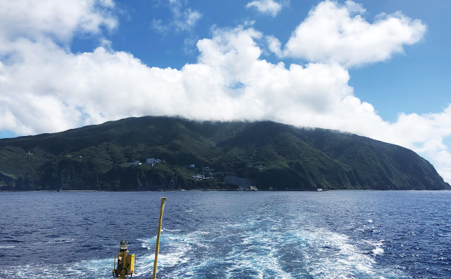 原生林で覆われている御蔵島