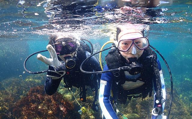 体験ダイビングの水中写真